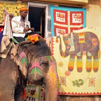 Quando um elefantinho se reconhece no bordado