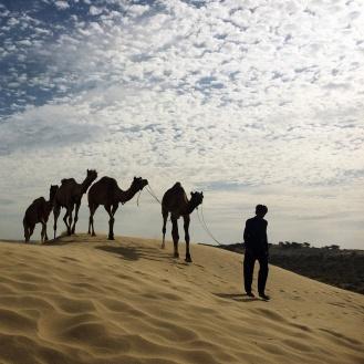 Aí vem a nossa carona, em Jaisalmer
