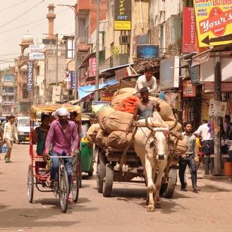 Trânsito intenso em Old Delhi